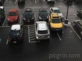 Parking like a boss