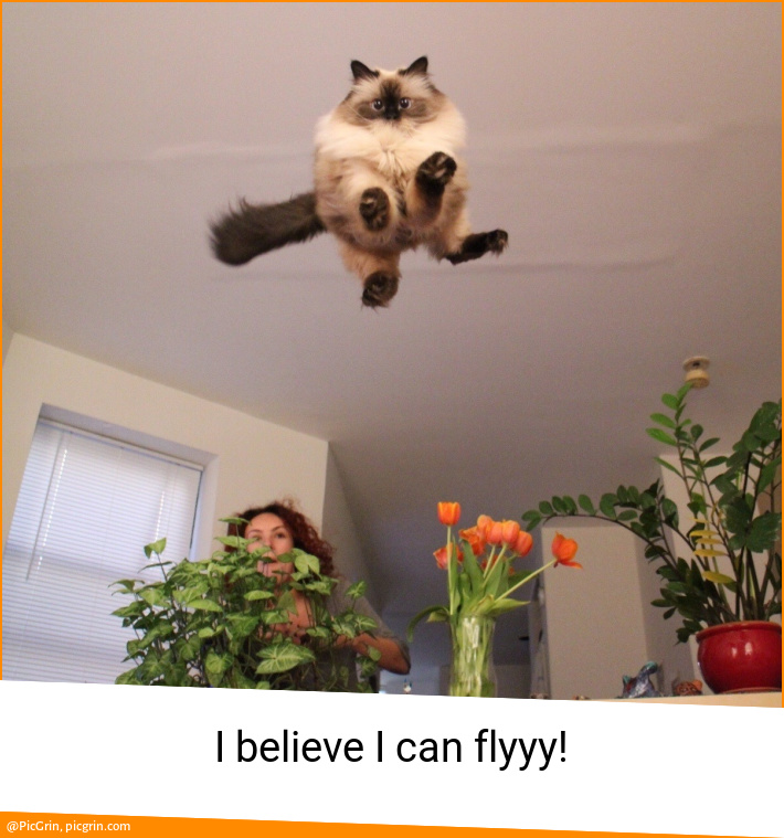 I believe I can flyyy!