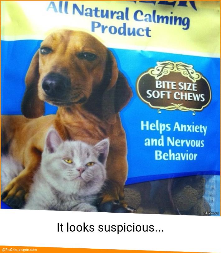 It looks suspicious...
