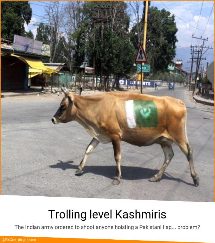 Trolling level Kashmiris