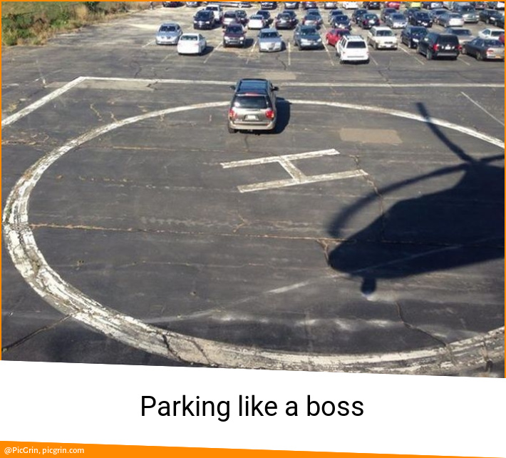 Parking like a boss