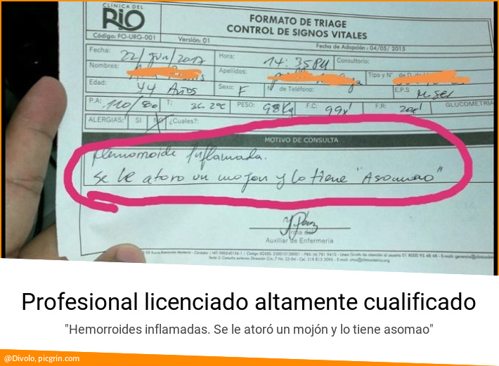 Profesional licenciado altamente cualificado