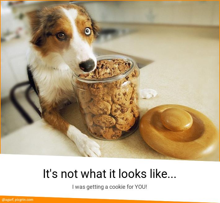 It's not what it looks like...