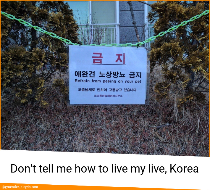 Don't tell me how to live my live, Korea