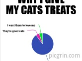 Why do I give my cats treats?