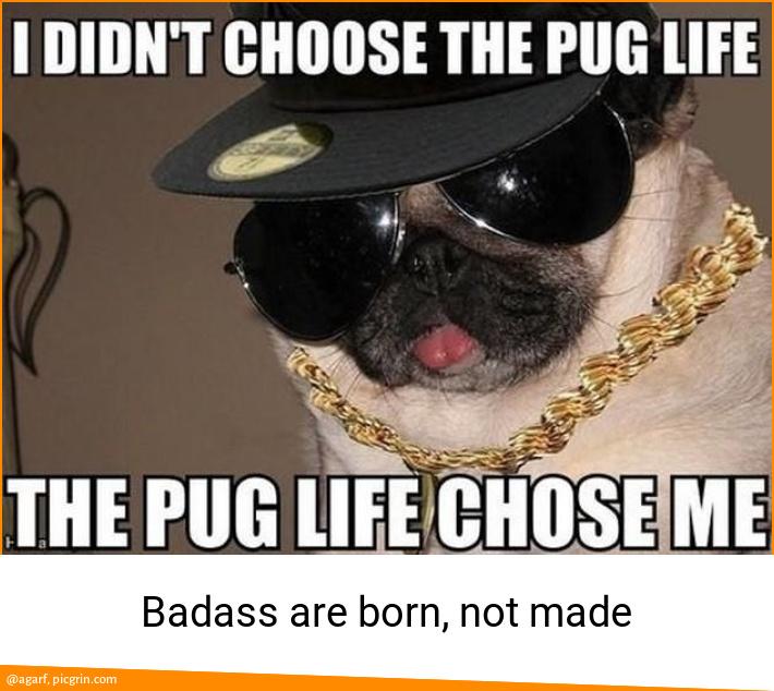 Badass are born, not made