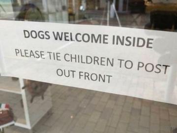 Cuando los perros se comportan mejor que los niños
