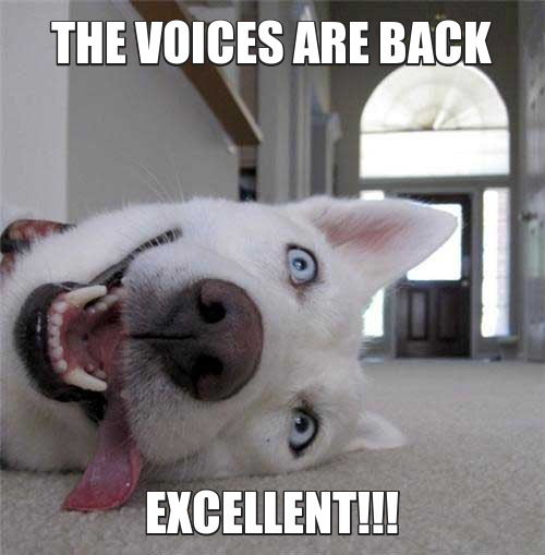 The voices are back