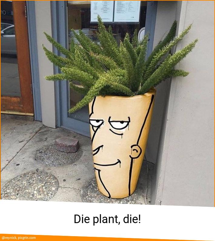 Die plant, die!