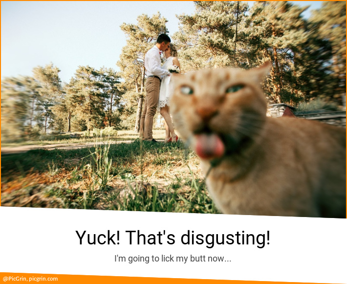 Yuck! That's disgusting!