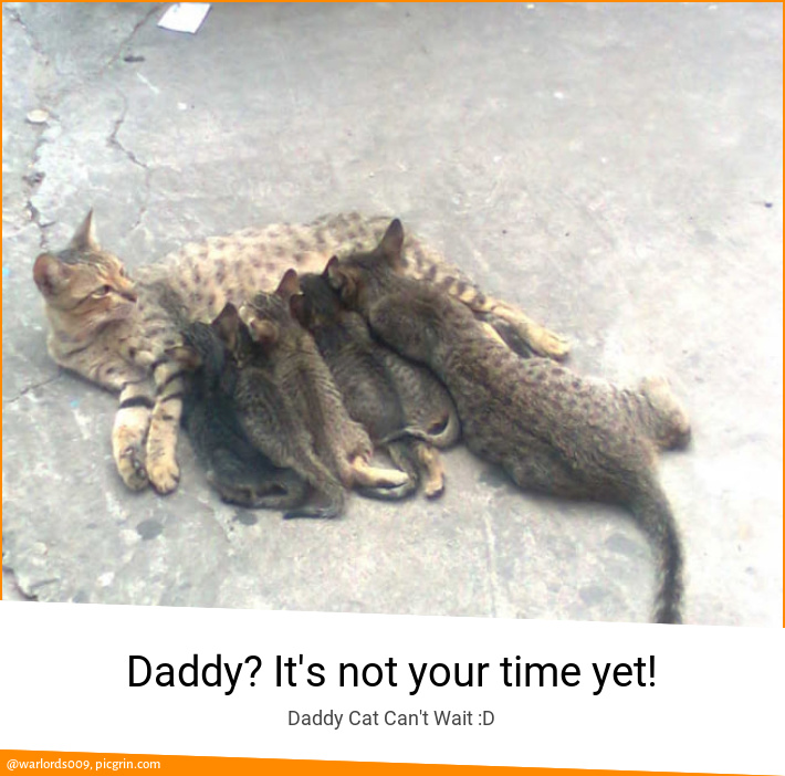 Daddy? It's not your time yet!