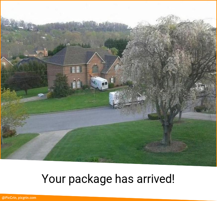 Your package has arrived!