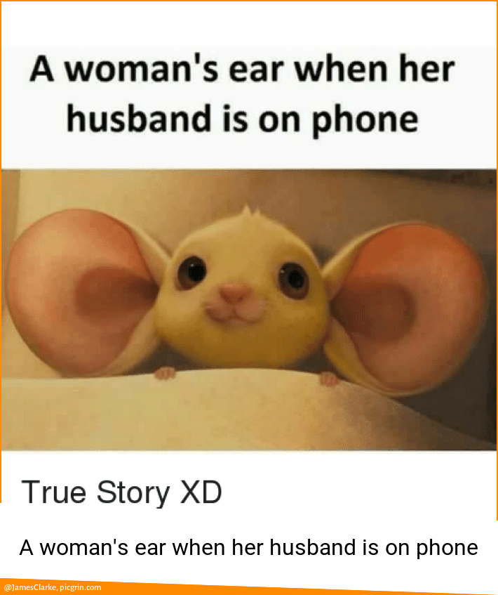 A woman's ear when her husband is on phone