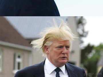 Donald Trump vs Viento