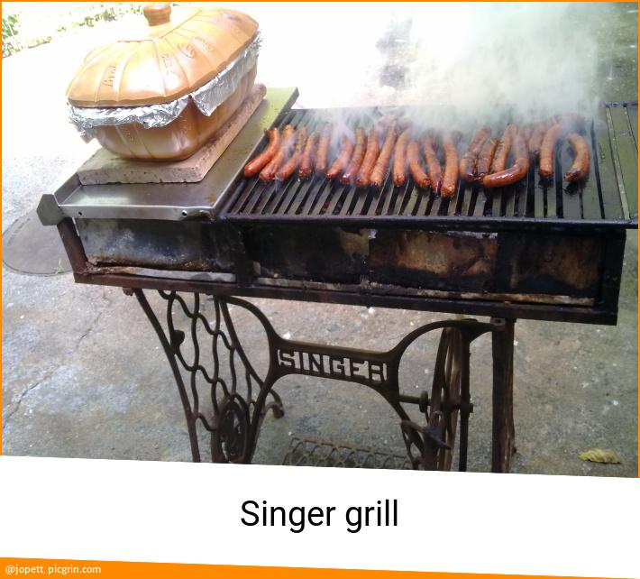 Singer grill