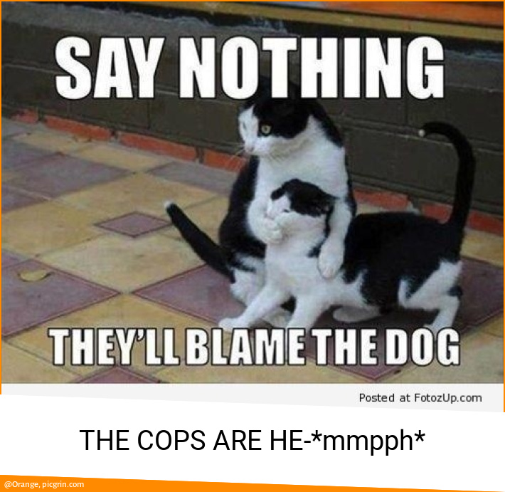 THE COPS ARE HE-*mmpph*
