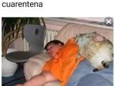 Sigue la Cuarentena